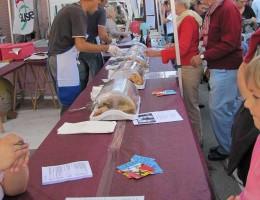 07-10-2012-pigiatura-A-100