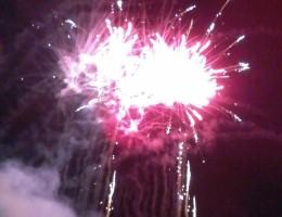 31-05-2015-Fiera-(125)